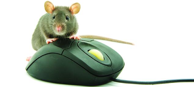 Slider-muis